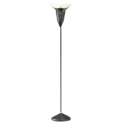 SOUNDOLIER 2.4GHZ FLOOR LAMP