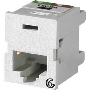 Ortronics Clarity 6 TracJack - modular insert