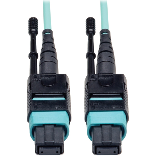 Tripp Lite (N844-10M-12-P) Connector Cable