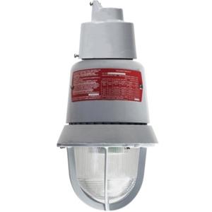 Edwards Signaling 116EXMLEDW-AQ 116 Class LED Lights Explosionproof LED light, White LEDs with Clear Lens, 24V AC/DC