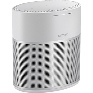 HOME SPEAKER 300 SILVER BRAND SOURCE ONLY 808429-1300
