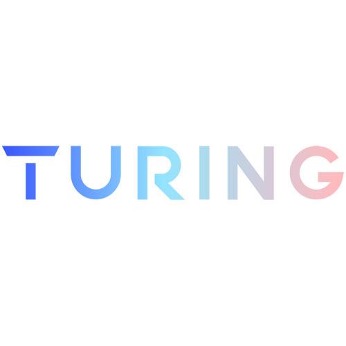 Turing TV-SLIPNFALL VISION Series Slip & Fall Add On Algorithm/Camera/Month