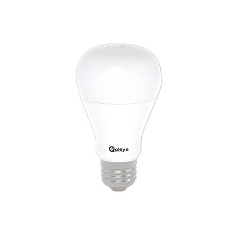 Flood Lightbulb
